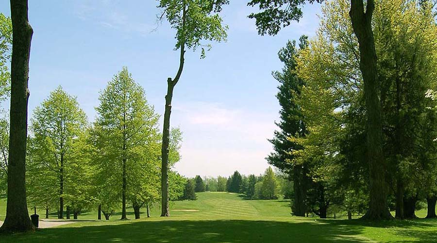 hole 13 at lenawee country club